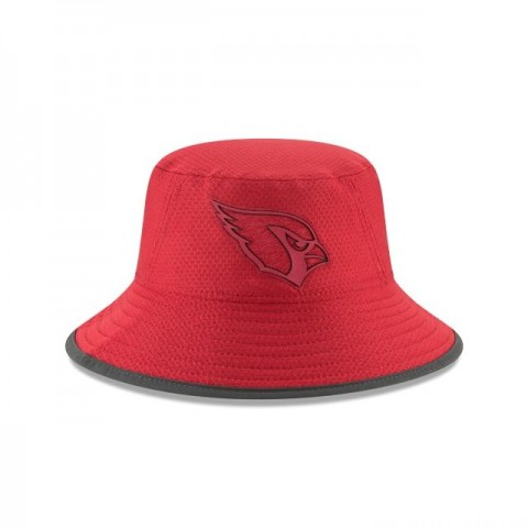 ARIZONA CARDINALS NFL TRAINING BUCKET - Sale
