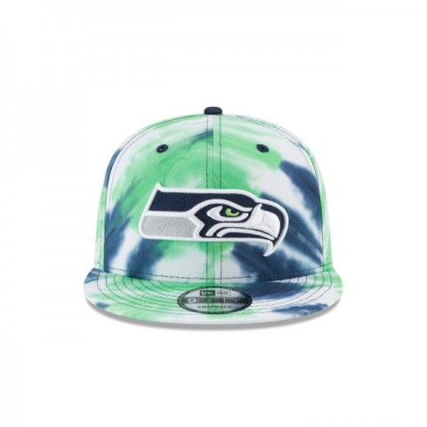 SEATTLE SEAHAWKS MARBLED  9FIFTY SNAPBACK